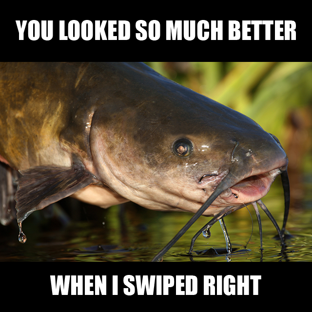 10 Ways To Catch Out A Catfish