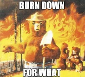 smokey-the-bear-new-slogan